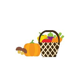 CSA---Land-Van-Duwijck---Fruit-en-groenten-