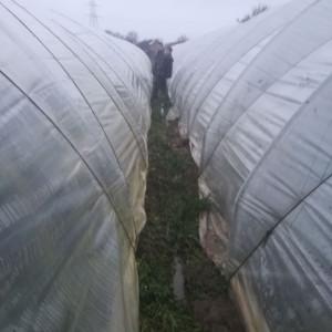 werkzaamheden  aan de tunnels na de storm...