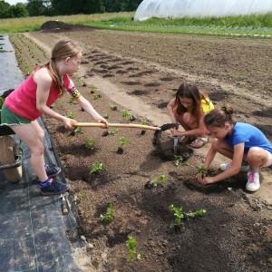 De meiden van klas 3 gaan gecoördineerd te werk!