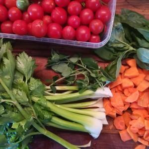 van wilde spontaan opgekomen tomatenplanten tomaatjes met barstje verzameld voor n exclusieve spaghettisaus
