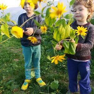 aardpeer-bloemen-meisjes