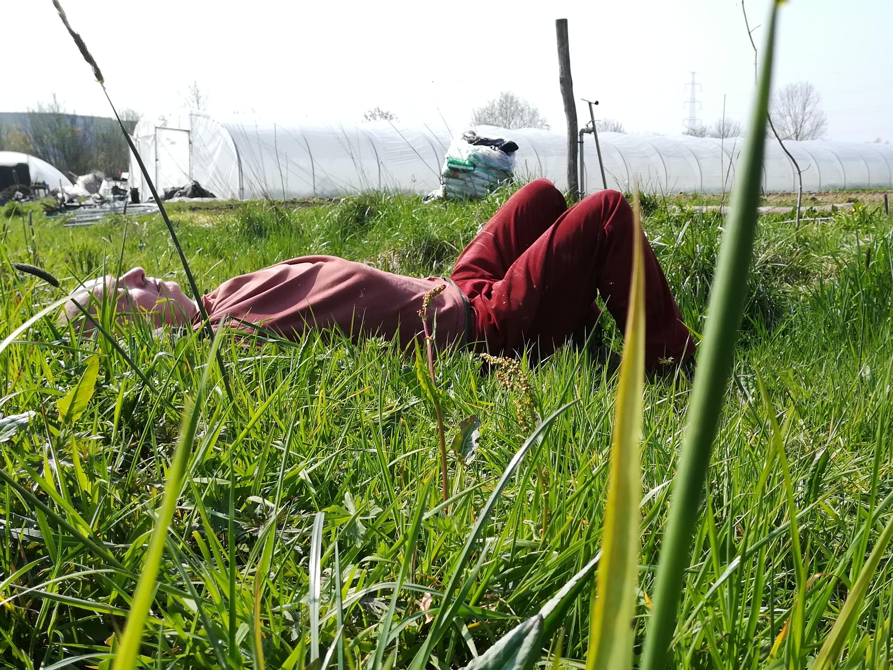 welverdiende siesta