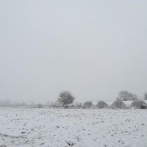 januari, sneeuwtafereel