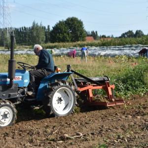 werk Birgit & csa, veld Verbeeck, tractor Jules en rooier Jack, oogst voor C
