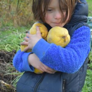 Robin mocht zoveel kweeperen halen als ze kon en dat deed ze!