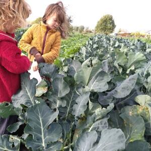 robin&loanne_broccoliplukken_profieltjes_2