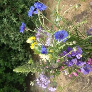 boeket juni paars-blauw-geel